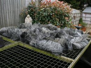 Pond filter brushes for sale in uk view 71 bargains for Second hand pond filters