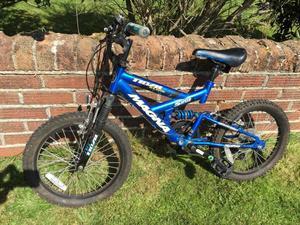 Kids blue bike