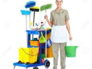 Cleaning Operative
