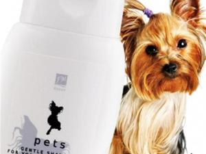 Yorkshire Terrier Shampoo Prevents Shedding and Soothes Irritated Skin