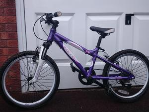 "Girls 20"" Carrera Luna Mountain Bike in Purple/White"