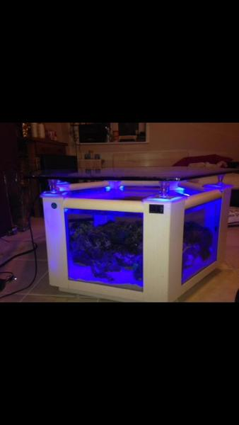 Unusual coffee table fish tank in pevensey expired friday ad - Fish tank coffee table amazon ...