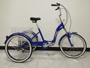 New Adult Electric Tricycle Trikidoo Style Bike Rickshaw
