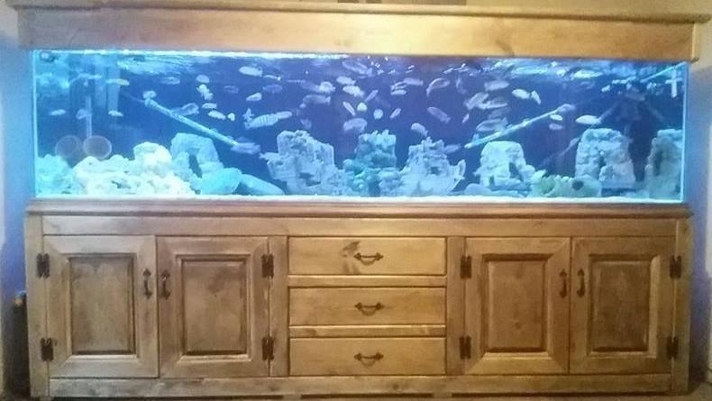 Custom made pilkington glass fish tanks solid wood for Custom made fish tanks