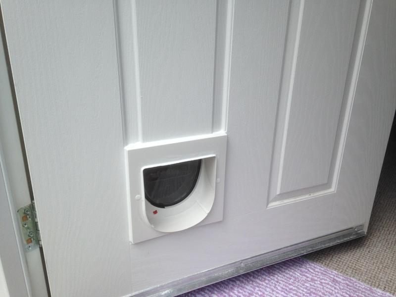Amazon Uk Staywell Cat Flap