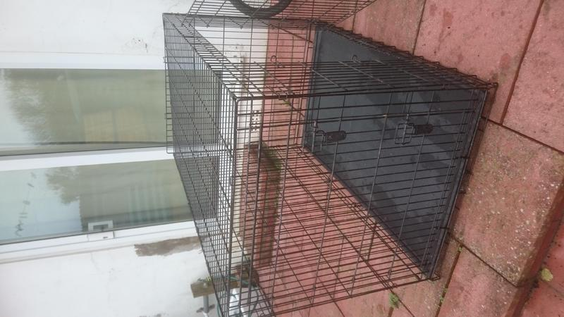 Xl dog cage in lancing for sale