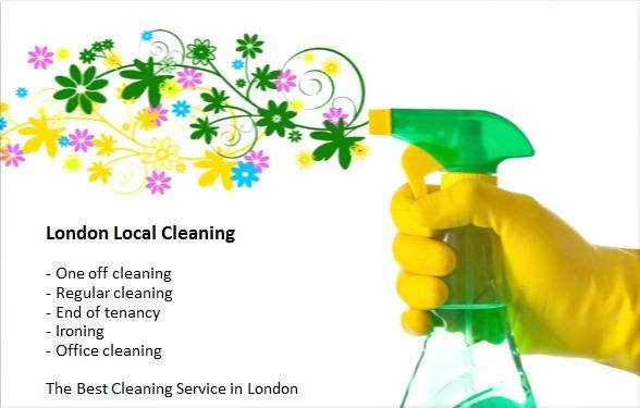 domestic cleaning services on good prices in kingston upon thames