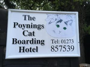 The poynings cat boarding hotel  in Brighton For Sale