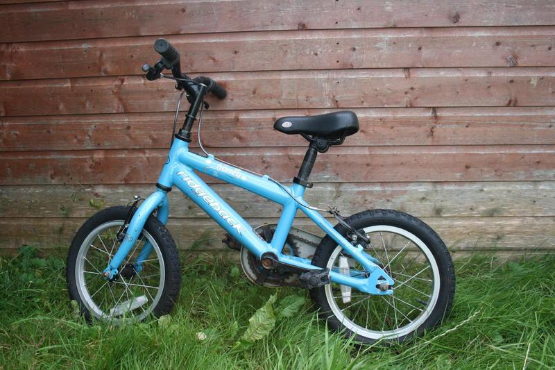 Ridgeback Honey Girls Bike Bicycle 14 Wheels In Lewes Expired