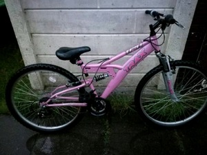 Trax T700 Hybrid Bike In Peterborough Sold Friday Ad