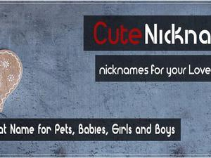 If You Are Looking For Cute Pet Nicknames Or Cool Snapchat Babies Names Whether